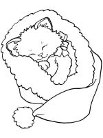 cute-cats-coloring-pages-16