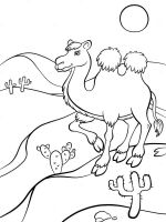 Desert-coloring-pages-11