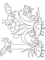 Insect-coloring-pages-13