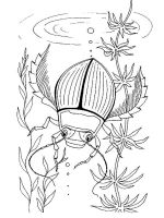 Insect-coloring-pages-16