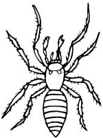 Insect-coloring-pages-19