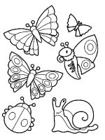 Insect-coloring-pages-3