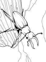 Insect-coloring-pages-34