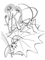 Insect-coloring-pages-39