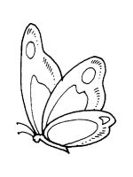 Insect-coloring-pages-5