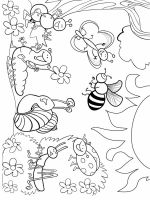 Insect-coloring-pages-6