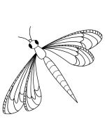 Insect-coloring-pages-7