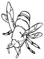 Insect-coloring-pages-8