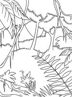 Jungle-coloring-pages-8