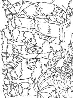 Jungle-coloring-pages-9