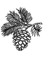 Pine-Cone-coloring-pages-12