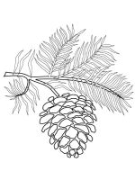 Pine-Cone-coloring-pages-14