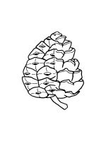 Pine-Cone-coloring-pages-20