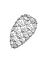 Pine-Cone-coloring-pages-21