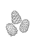 Pine-Cone-coloring-pages-22