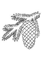 Pine-Cone-coloring-pages-8