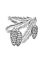 Pine-Cone-coloring-pages-9