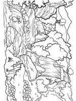 Waterfall-coloring-pages-13
