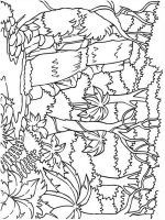 Waterfall-coloring-pages-3