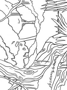 forest-coloring-pages-11