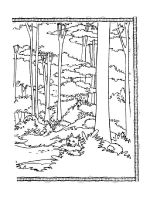 forest-coloring-pages-18