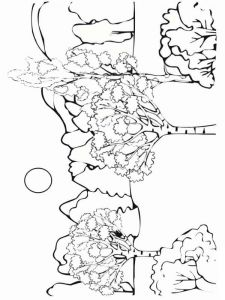 forest-coloring-pages-3