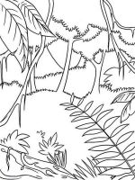 forest-coloring-pages-4