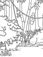 forest-coloring-pages-5