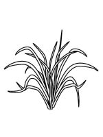 grass-coloring-pages-14