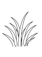 grass-coloring-pages-2