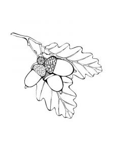 leaf-coloring-pages-10