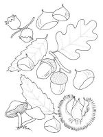 leaf-coloring-pages-12