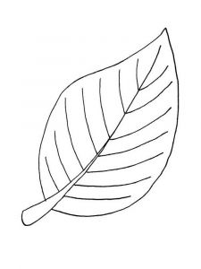 leaf-coloring-pages-21