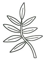 leaf-coloring-pages-23