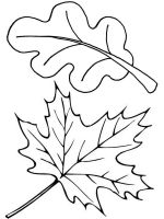 leaf-coloring-pages-26