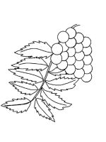 leaf-coloring-pages-27