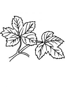 leaf-coloring-pages-28