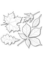 leaf-coloring-pages-33