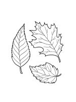 leaf-coloring-pages-39