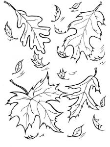 leaf-coloring-pages-4
