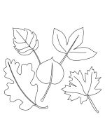 leaf-coloring-pages-42