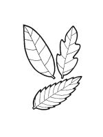 leaf-coloring-pages-43