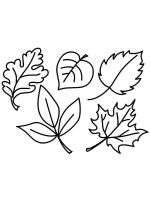 leaf-coloring-pages-47