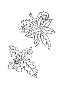 leaf-coloring-pages-9