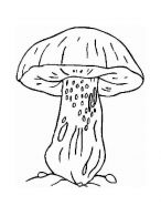 mushrooms-coloring-pages-19