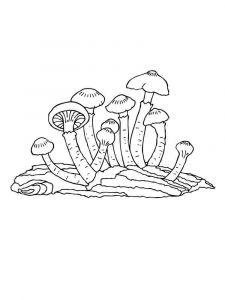 mushrooms-coloring-pages-35