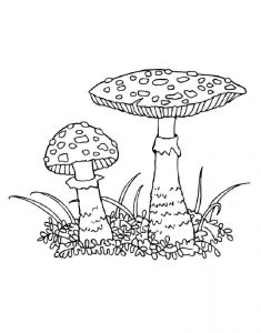 mushrooms-coloring-pages-5