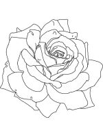 petals-coloring-pages-18