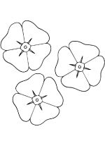 petals-coloring-pages-6