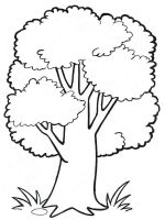 plants-coloring-pages-18